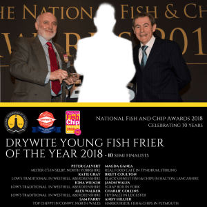 Drywite Young Fish Frier 201A